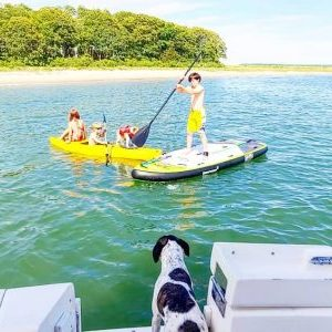 Children kayaking and paddle boarding while a dog looks on from the back of the Pool Shark.