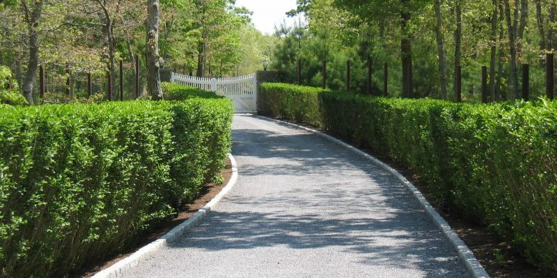 Hedge-lined 400' driveway