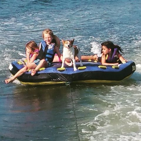 Three girls and a small dog tubing.