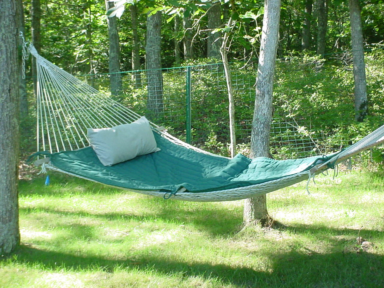 Hot Tub Hammock >> Release Your Stress In A Hot Tub In A Hammock Or Watch Kids Zip Line